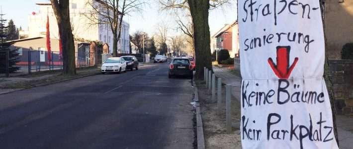 Grüne opfern im Kampf gegen das Auto sogar Bäume